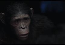 طلوع سیاره میمونها