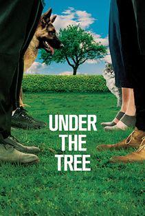 زیر درخت