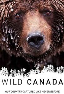 مستند حیات وحش کانادا