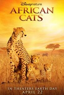 گربه سان های آفریقایی
