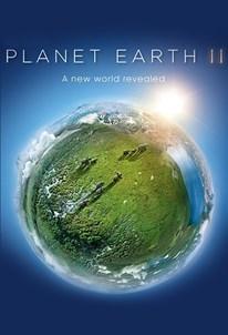 سیاره زمین ۲
