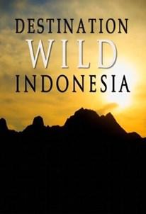 حیات وحش: اندونزی