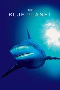 سیاره آبی