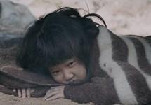 آیلا: دختر جنگ