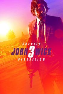 جان ویک ۳