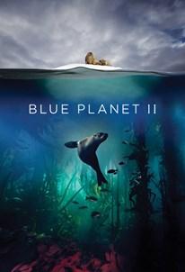 سیاره آبی ۲